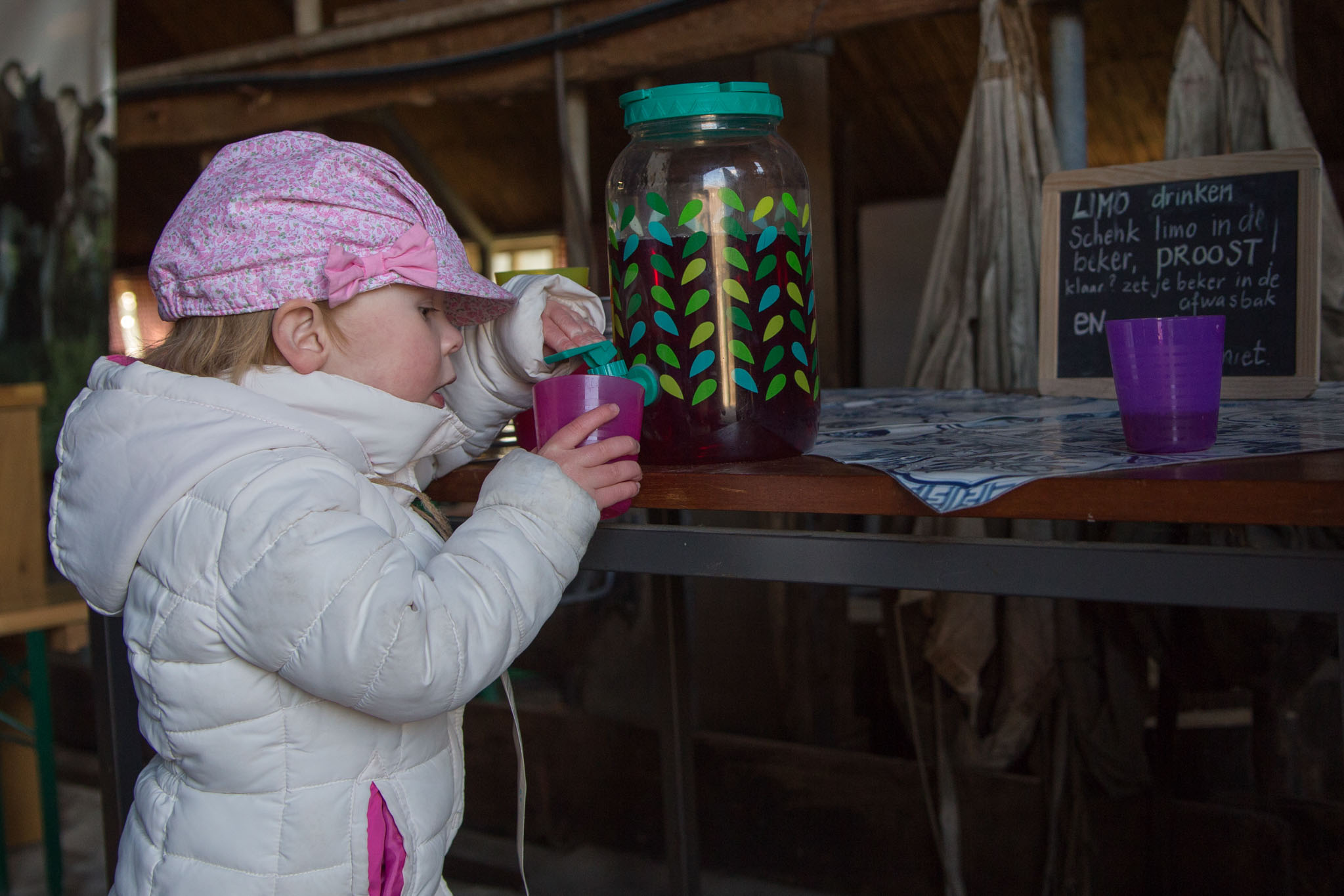 boerderij De Zonnewijzer Open dag limonade drinken